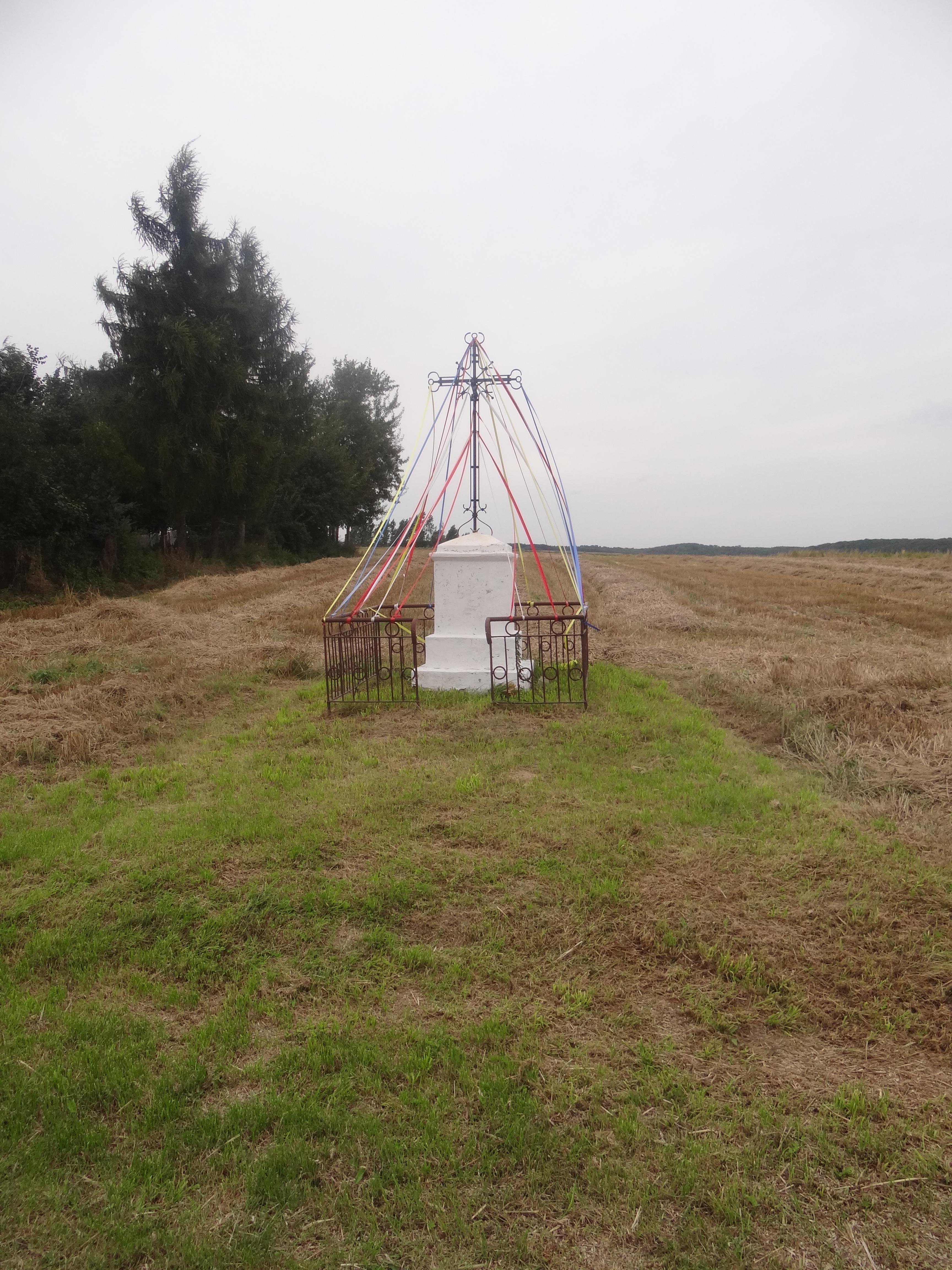 miejsce w Pstroszyach 1 gdzie stał dom Szymona Ostrowskiego i Anastazji z Kubatow-zdjecie wykonane w roku 2014